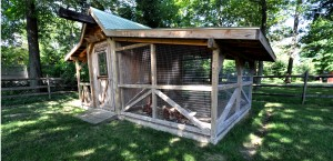 32 styles chicken coop 1